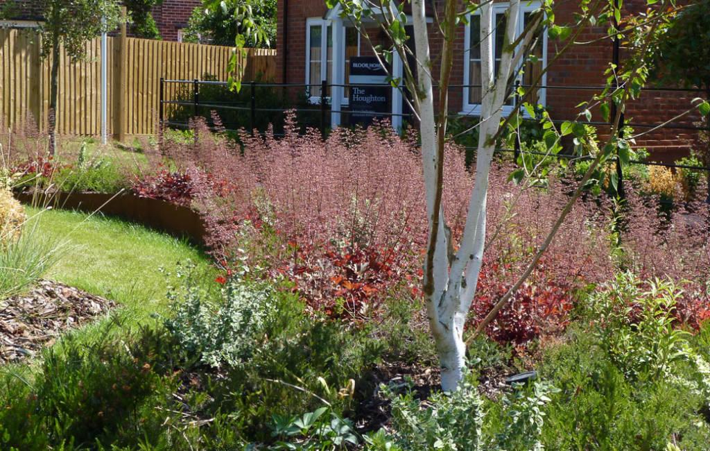Communal Garden 4