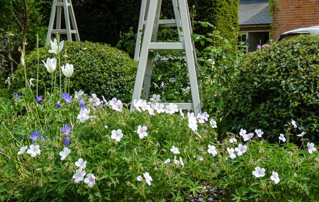 Formal Front Garden 3