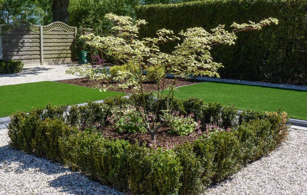 Front Garden 5