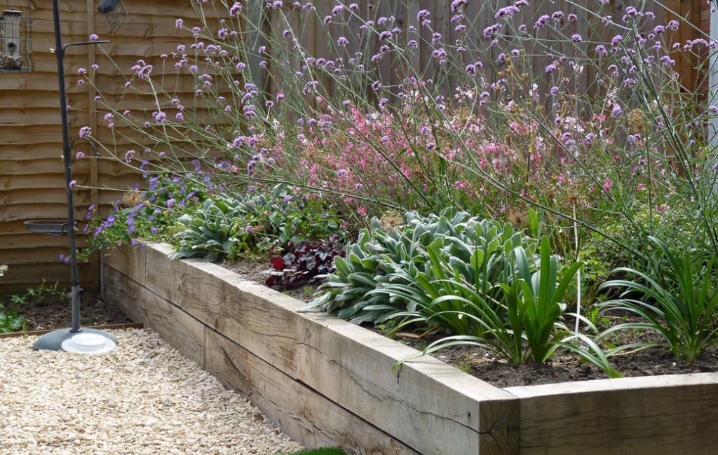 Low-Allergen Garden
