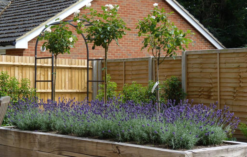 Low-Allergen Garden 4